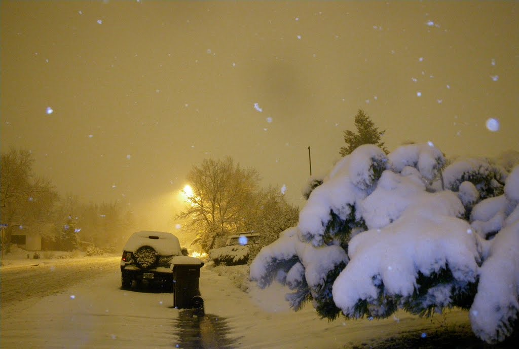 Late night snowfall. November 14, 2009., Аурора