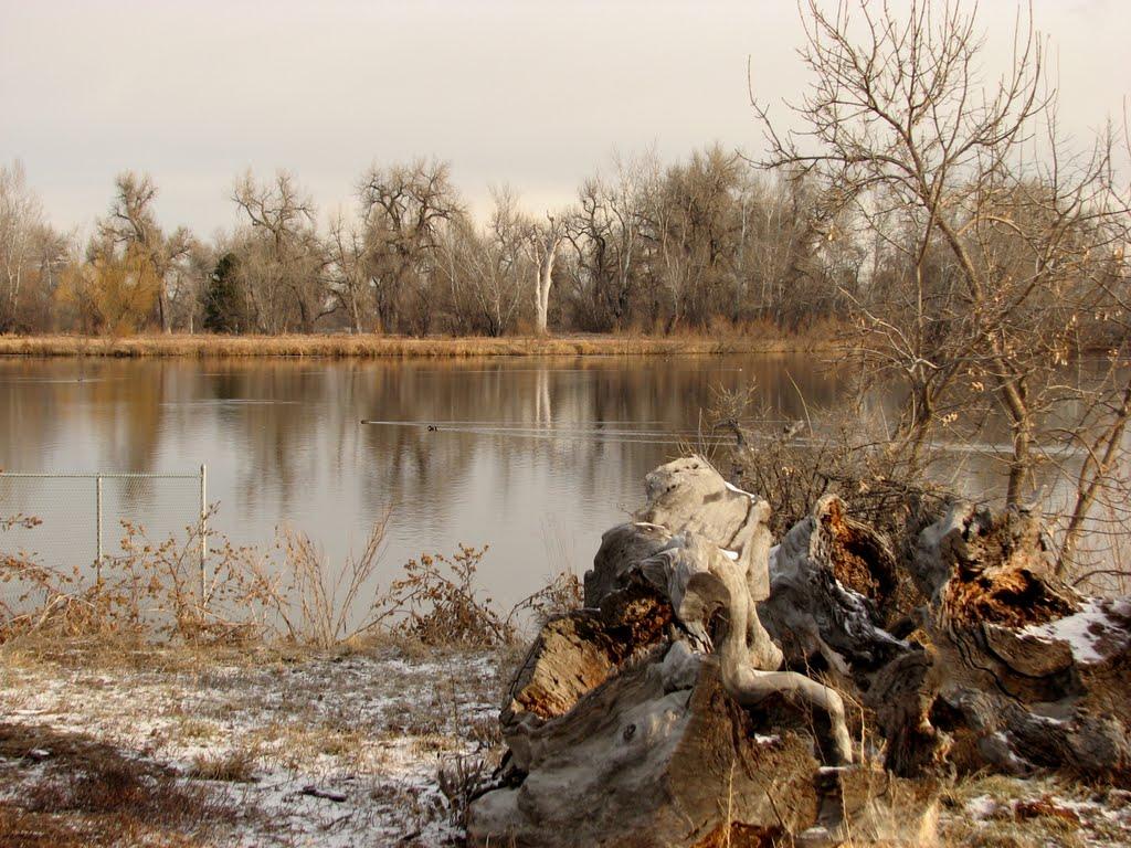 Frosty morning on Ketring Lake, Литтлетон