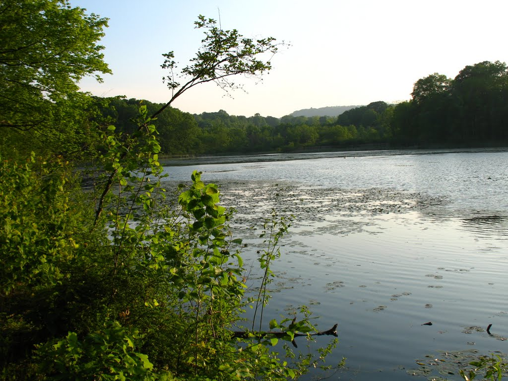 View from N end of Highland Pond - May 14 2010, Валлингфорд