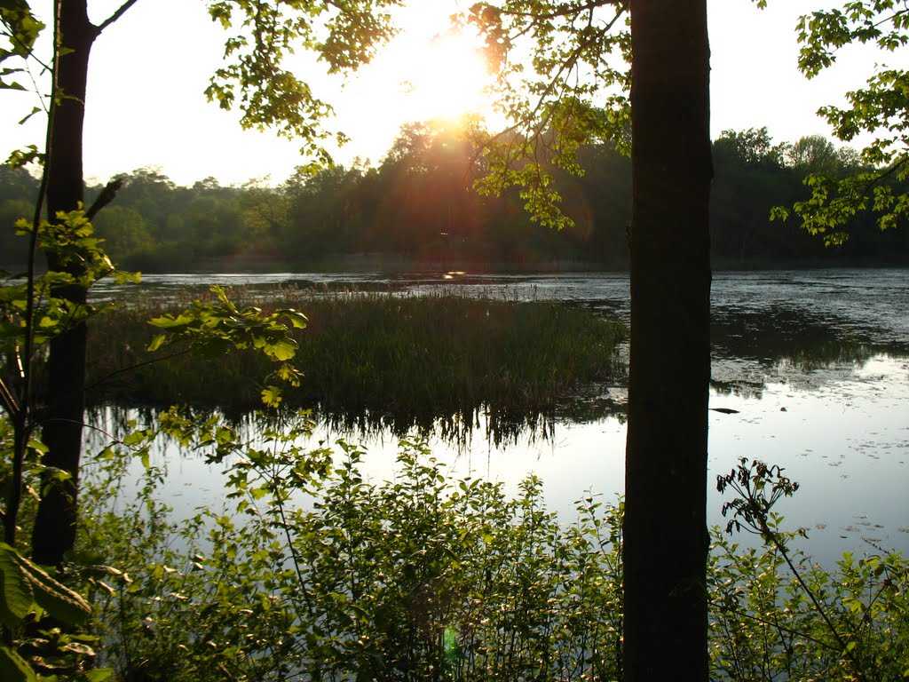 View from E side of Highland Pond - May 14 2010, Валлингфорд