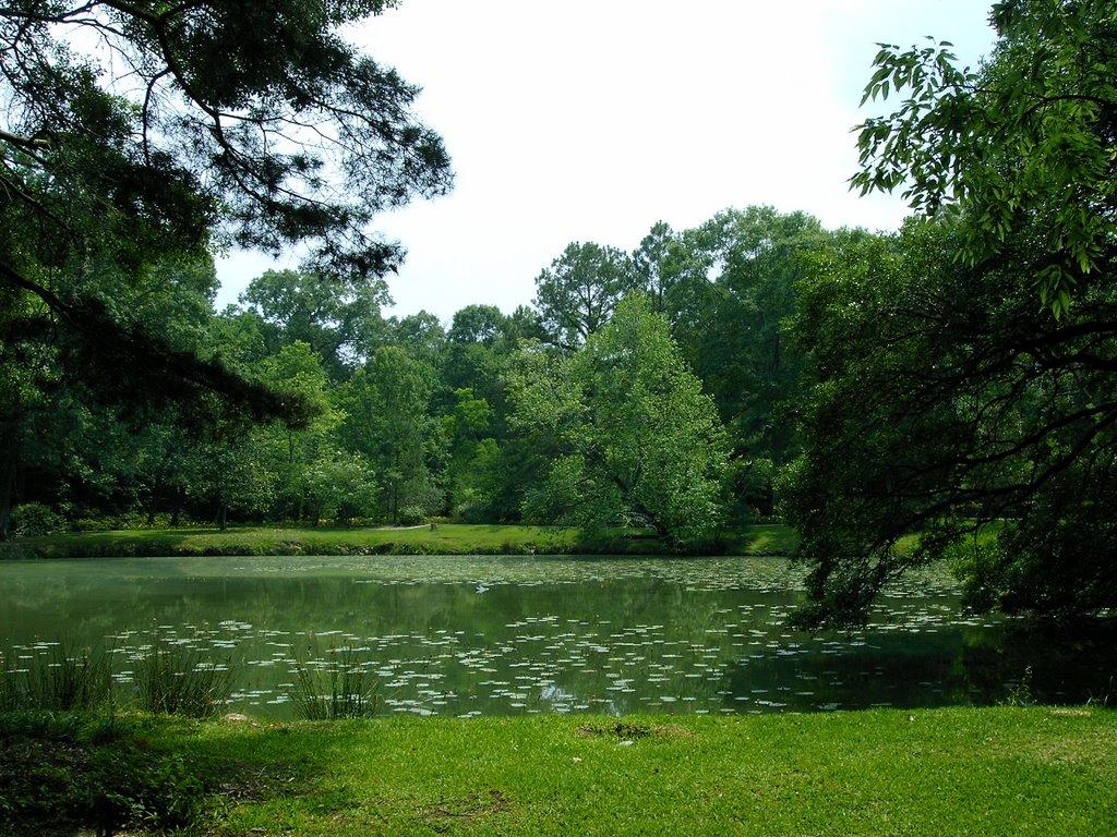 Pond at Cohn Arboretum, Бейкер
