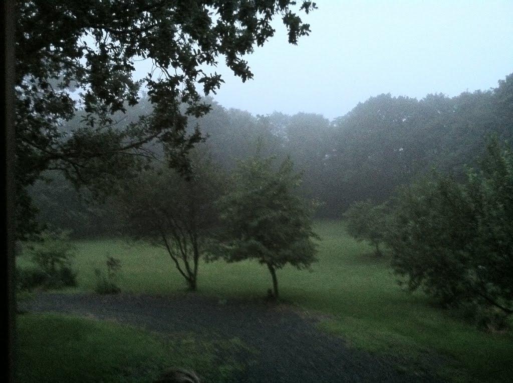 Nahant mist, Нахант