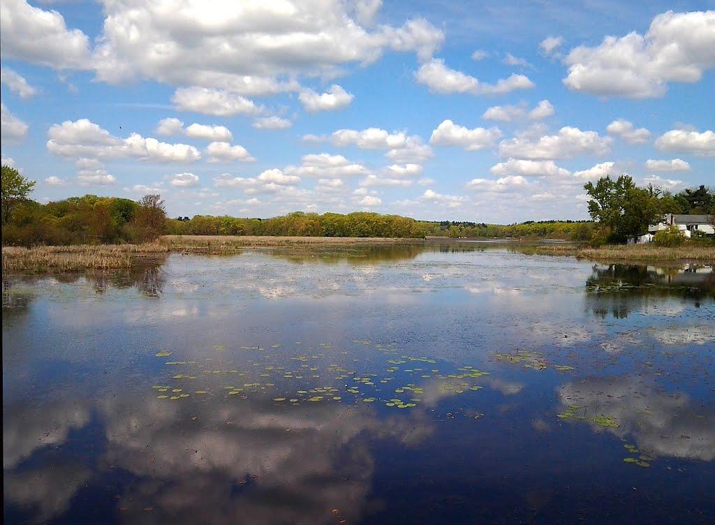Milford Pond/Cedar Swamp, Таунтон