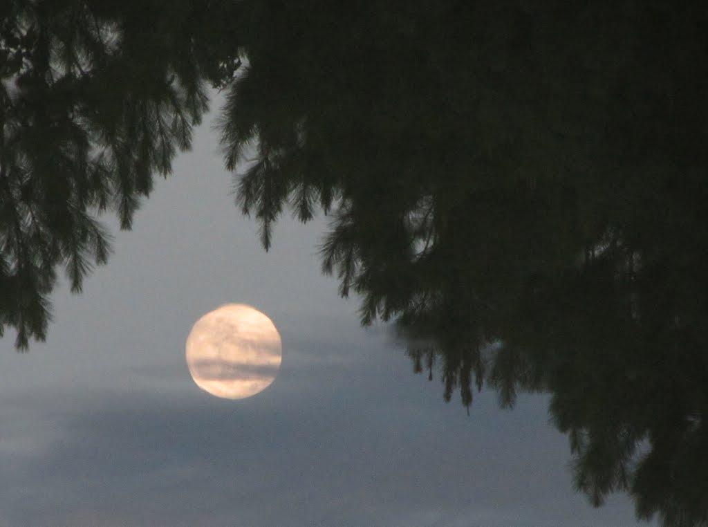 Full moon rising from water, Гулф Хиллс