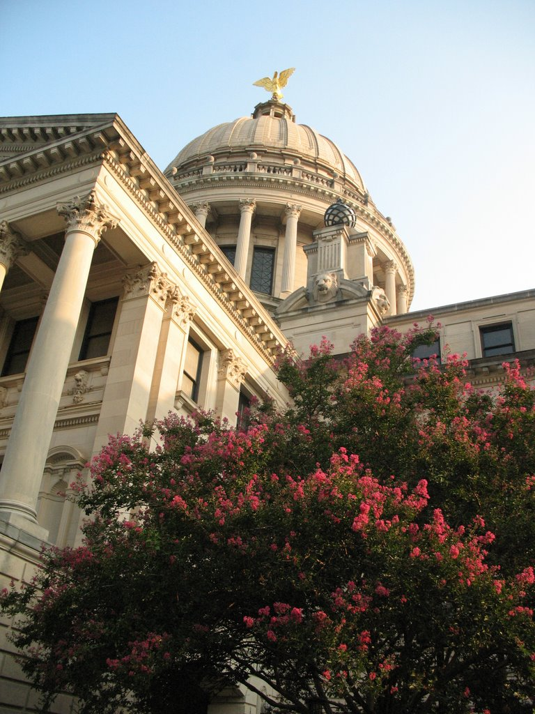 Mississippi Capitol from below, Сумнер