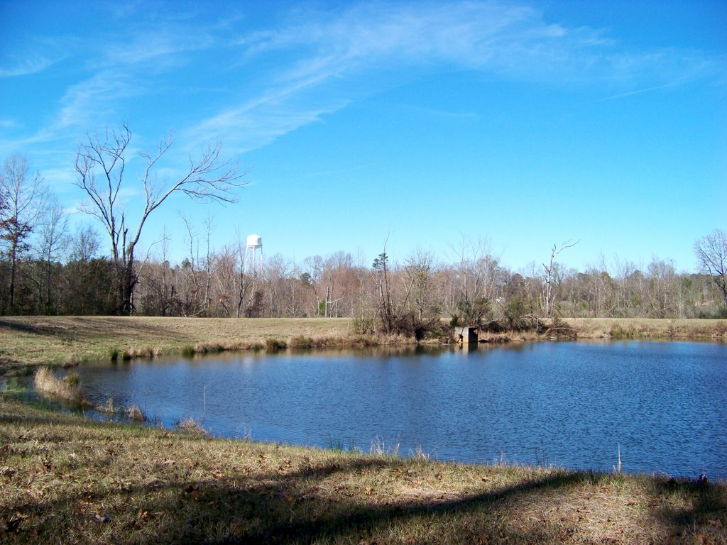 Pond, Сумнер