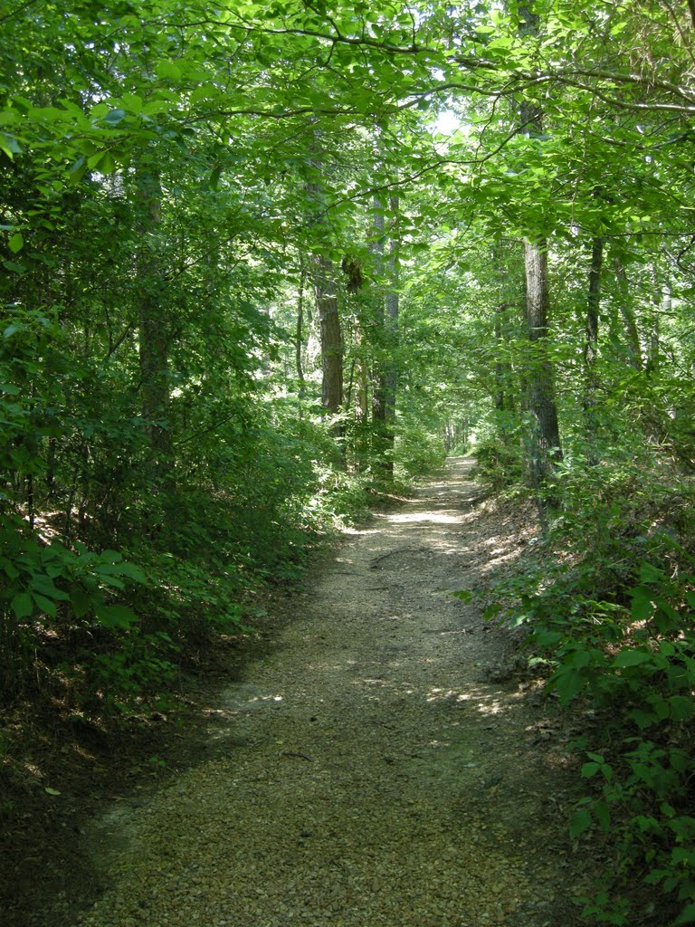 The Old Natchez Trace - June 2011, Сумралл