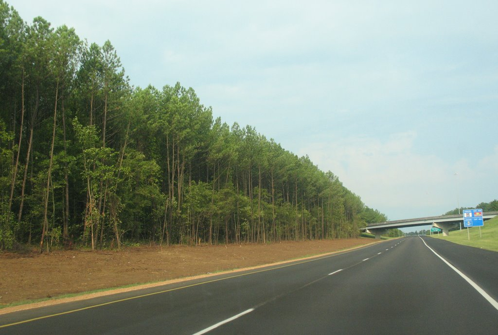 Tree-lined 20, Тутвилер