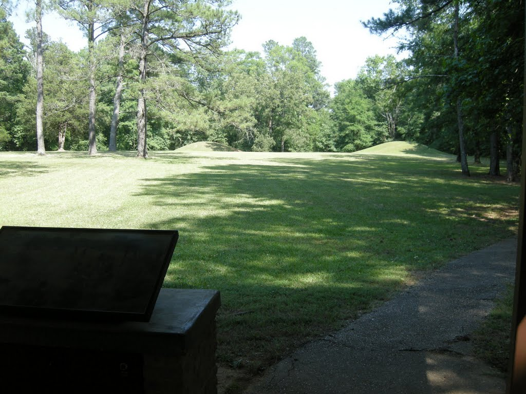 Indian Mounds near the Natchez Trace Pkwy - June 2011, Тутвилер