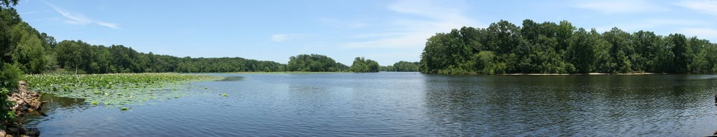 Pearl river bend in the Natchez Trace NP, Тутвилер