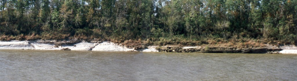 Tsunami layer at Moscow landing Tombigbee river, Хармони