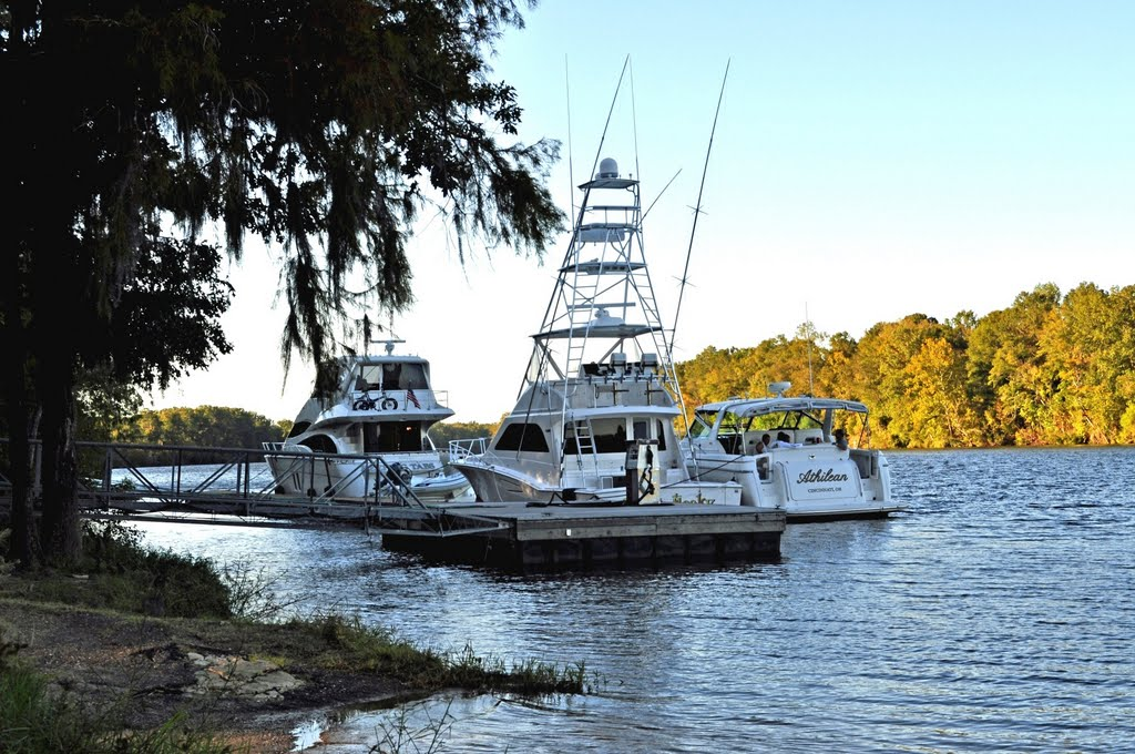 Yachts at the Fueling Dock at Bobbys Fish Camp (near Bladon Springs, AL), Хармони