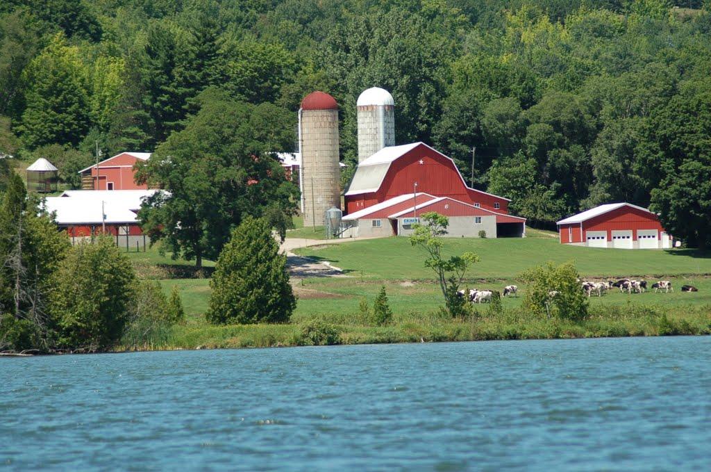 Farm on the Lake, Иониа