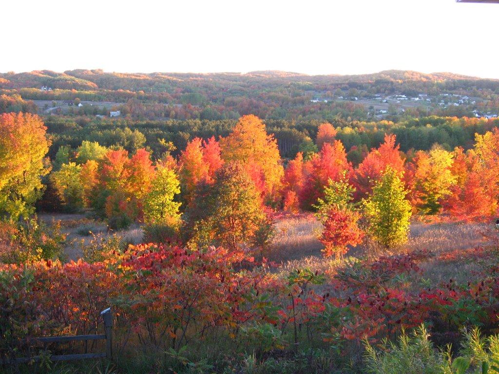 Fall in Leelanau, Ист Йордан