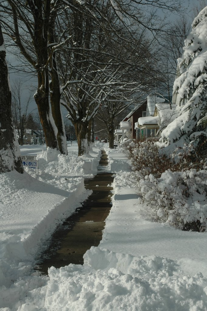 East Truman Street, Ньюберри