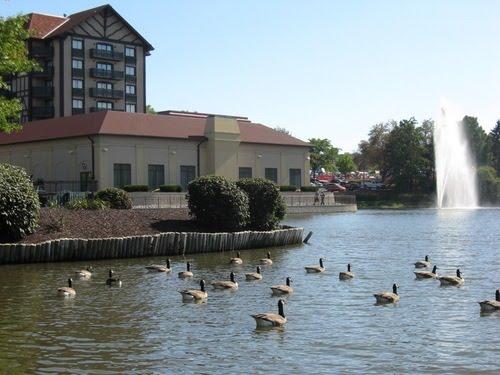 Westport Plaza Lake, Корал-Хиллс