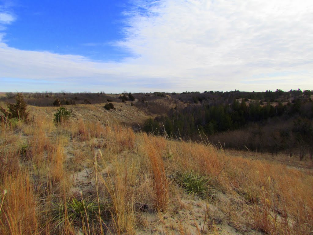 Viewing easterly, from atop a rim next to a muzzleloading range, off Nebraska State Spur Hwy. 86B, in the Bessey Unit of the Nebraska National Forest. Halsey, Nebraska, Скоттсблуфф