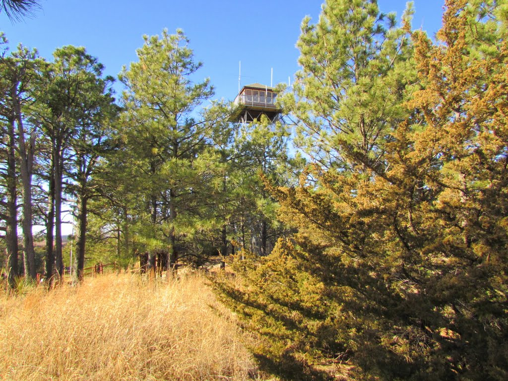 Viewing west-north-westerly toward the Scott Fire Lookout off the side of the terminus of Nebraska State Spur Hwy. 86B. In the Bessey Unit of the Nebraska National Forest, Halsey, Nebraska, Скоттсблуфф