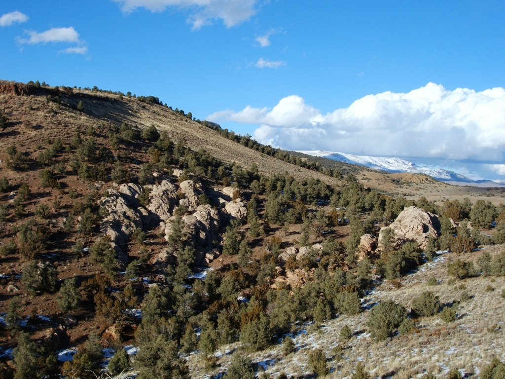 Near Hickison Summit, Hwy 50, Nevada, Вегас-Крик
