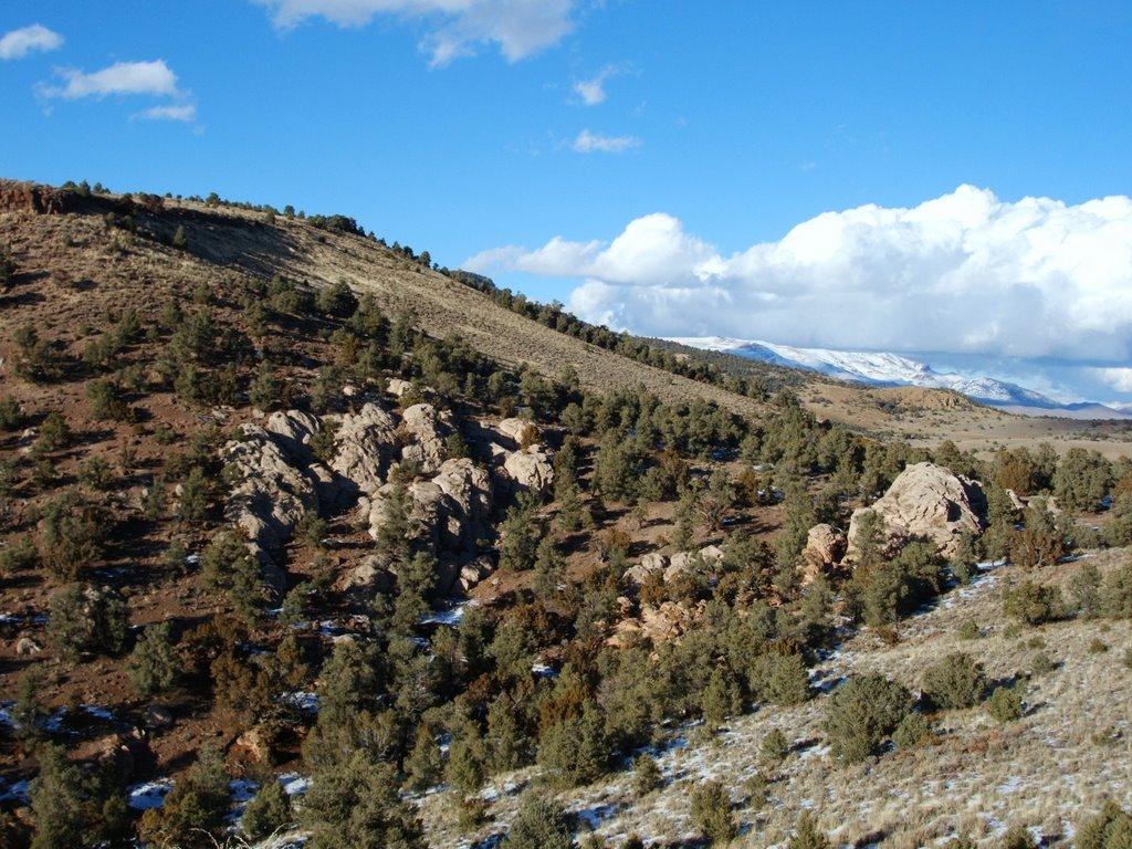 Near Hickison Summit, Hwy 50, Nevada, Калинт
