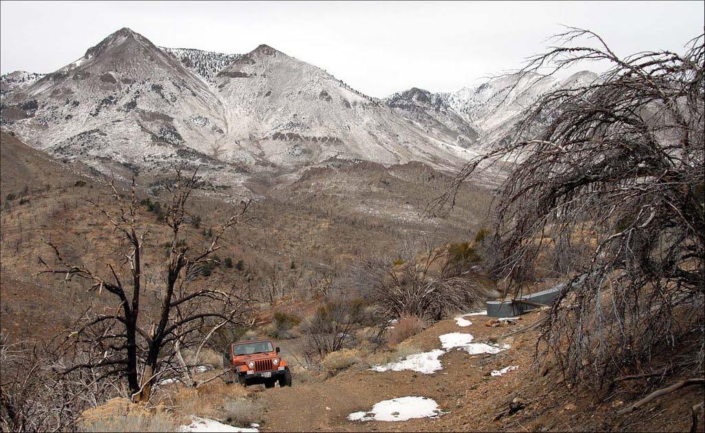 Twin Peaks - 200704LJW, Хавторн
