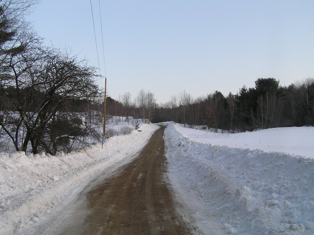 Lambert Road to Homestead Forest, Вольфеборо