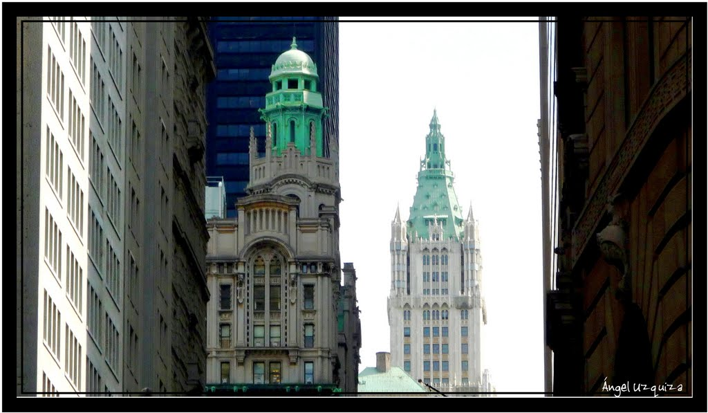 Woolworth building - New York - NY, Ист-Патчога