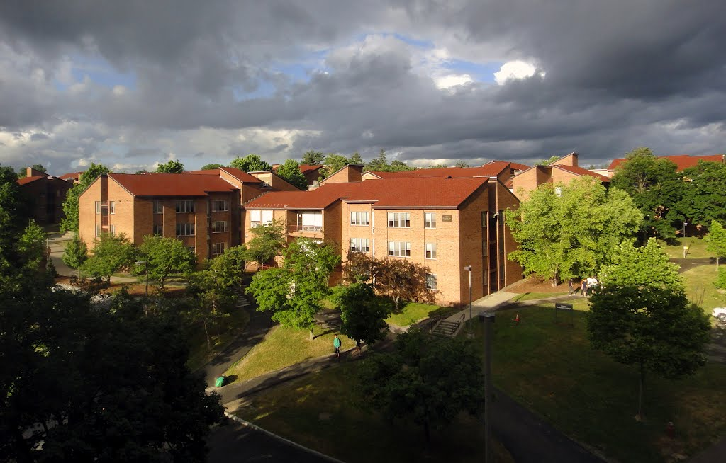 Ujamaa Residential College, Cornell University, Итака
