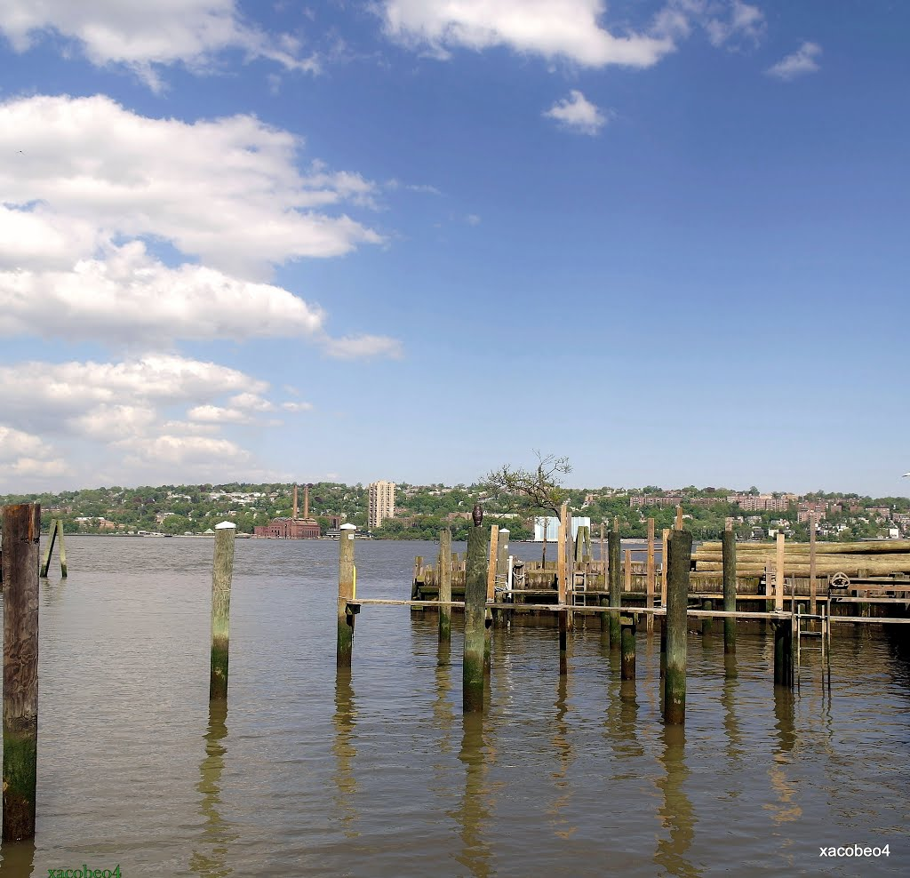 Ramifíquese! Visite los Árboles,del Hudson. Even if not we realize, the Hudson touches our lives every day., Йонкерс