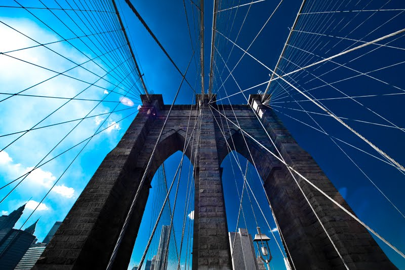 Brooklyn Bridge 2010, Камиллус