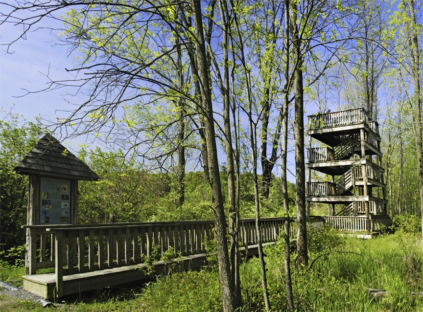 Ramshorn-Livingston Sanctuary, Катскилл