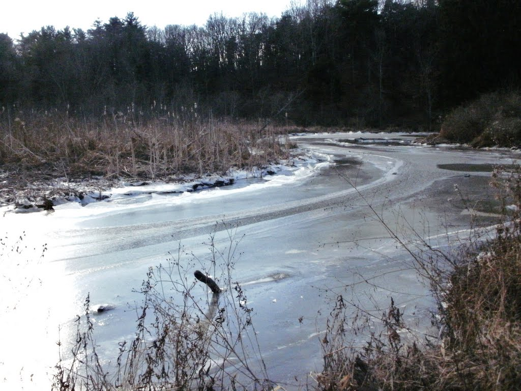 frozen Ramshorn Creek, Катскилл