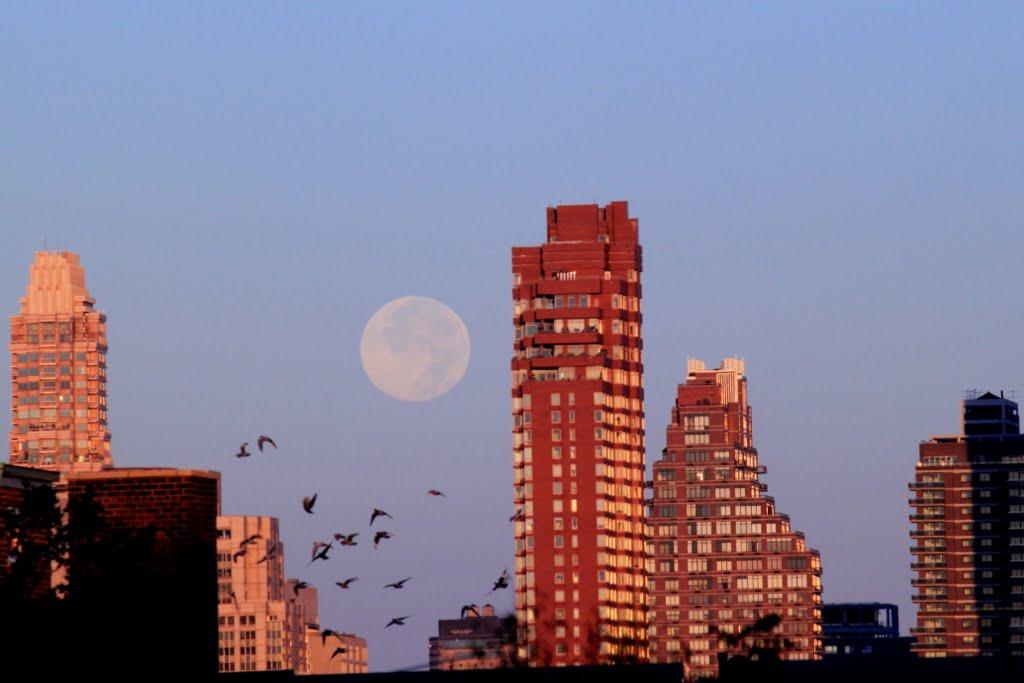 Moonset at Sunrise, Квинс