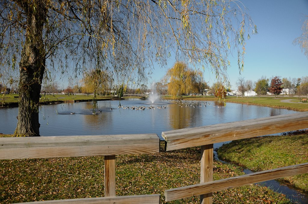 Pond at Clarence Town Hall, Кларенс-Сентер