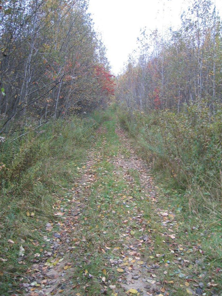 Trails, Клинтон