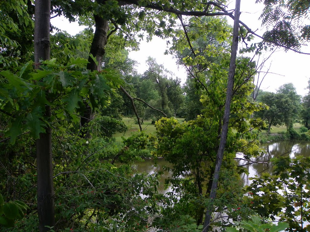 Cayuga Creek, Como Park, Ланкастер