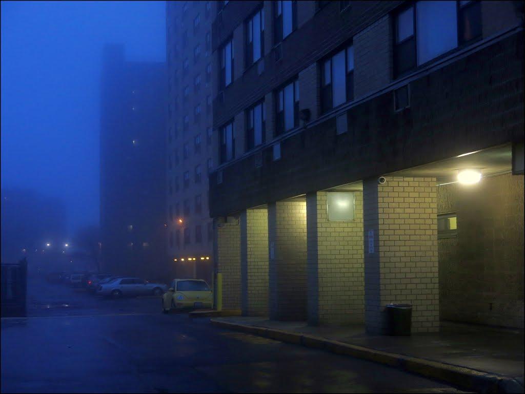 Blue foggy evening, Лауренс