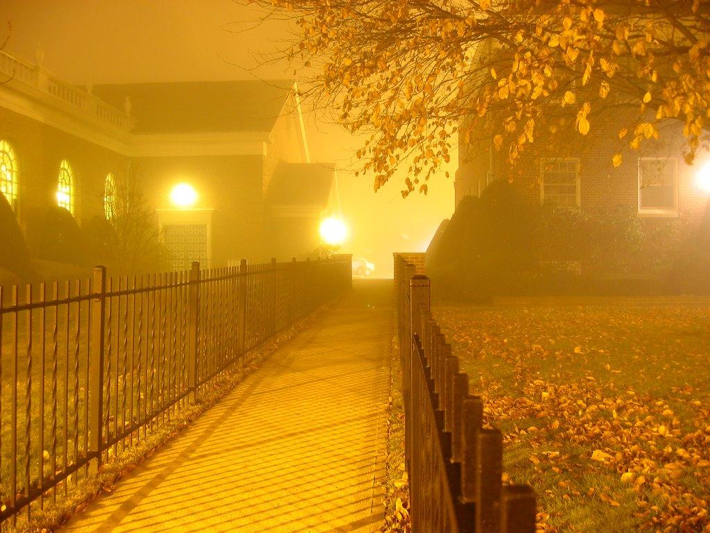 Fog, Линденхарст