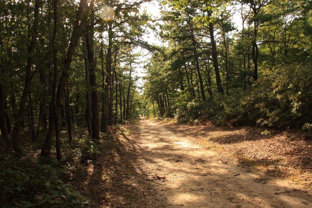 Brookhaven State Park - Green trail, Миддл-Айденд