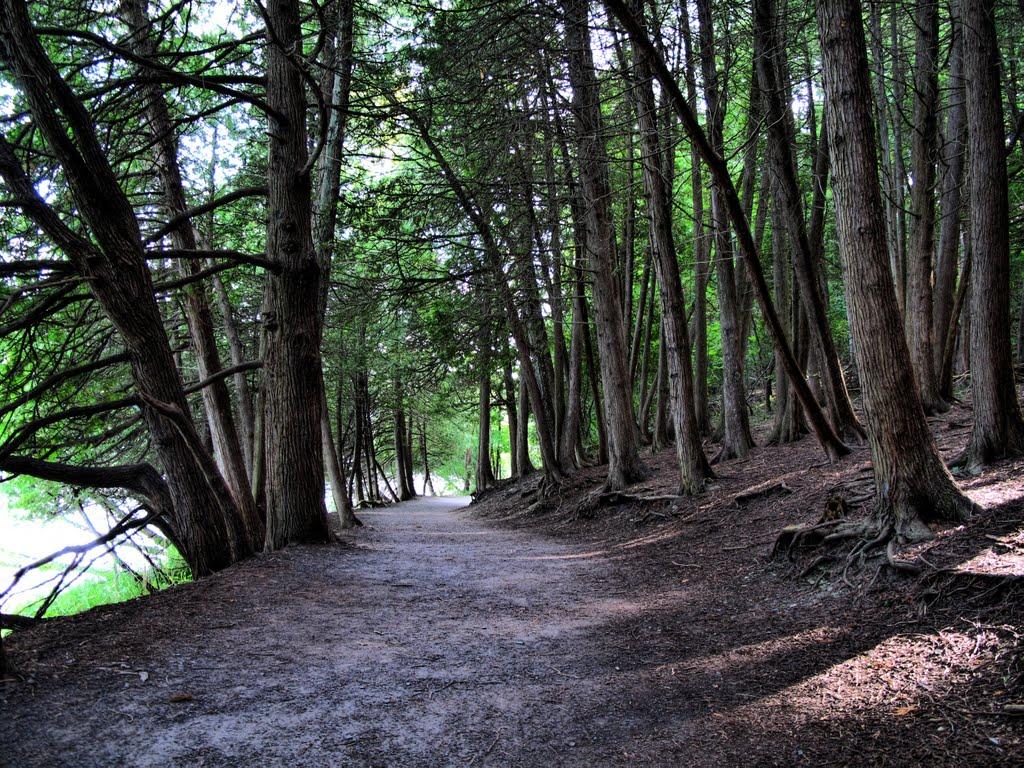 Green Lake State Park, Миноа