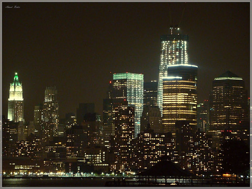 Manhattan - The Urban Jungle (* by Ahmet Bekir), Нью-Йорк-Миллс