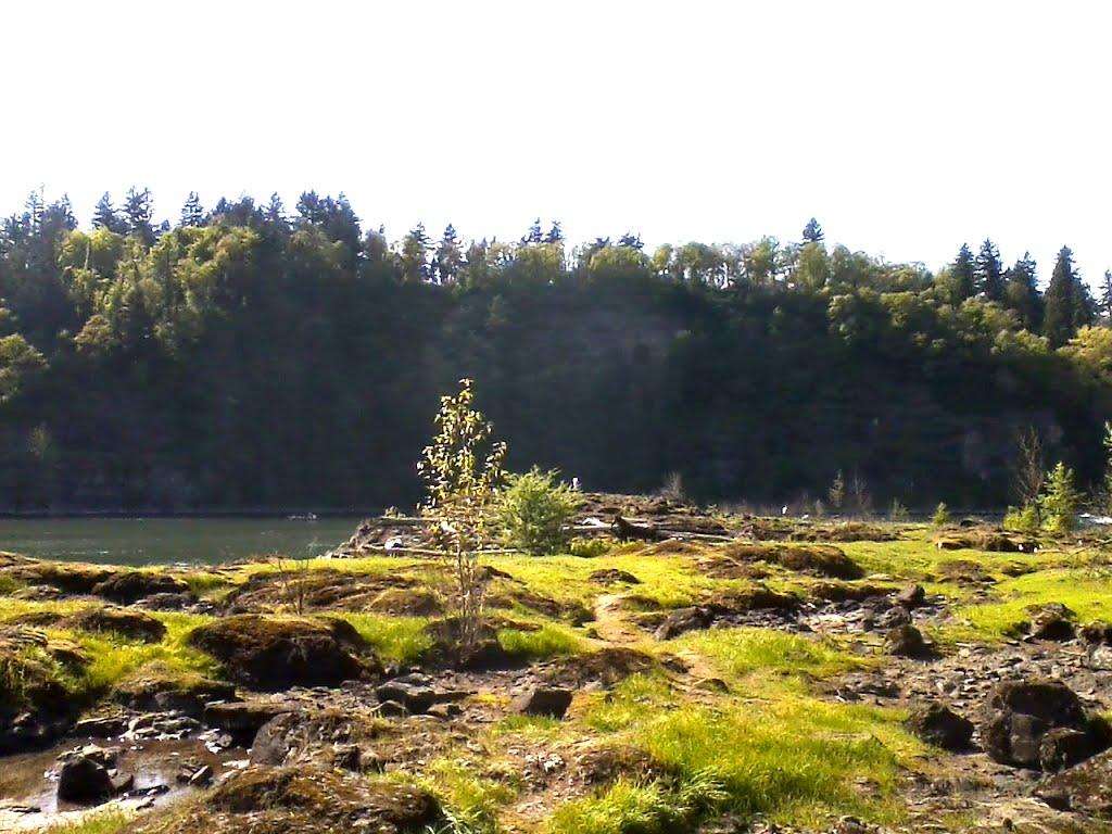 Elk Rock from Elk Rock Island, Лейк-Освего