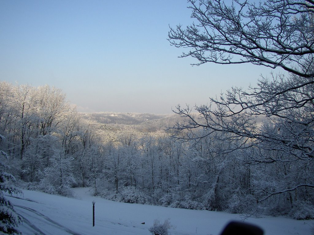 Winter in Bell Acres, Экономи