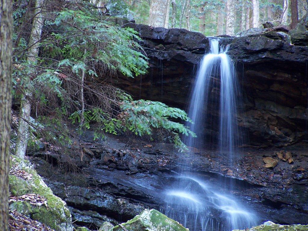 Swallow Tail Falls at the Village on Sewanee Creek, Коалмонт