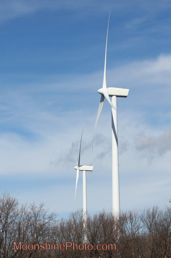 Buffalo Mountain Wind Farm, Оливер Спрингс