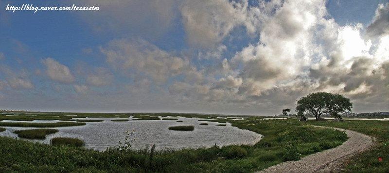 Estuary at Galveston, Кастл-Хиллс