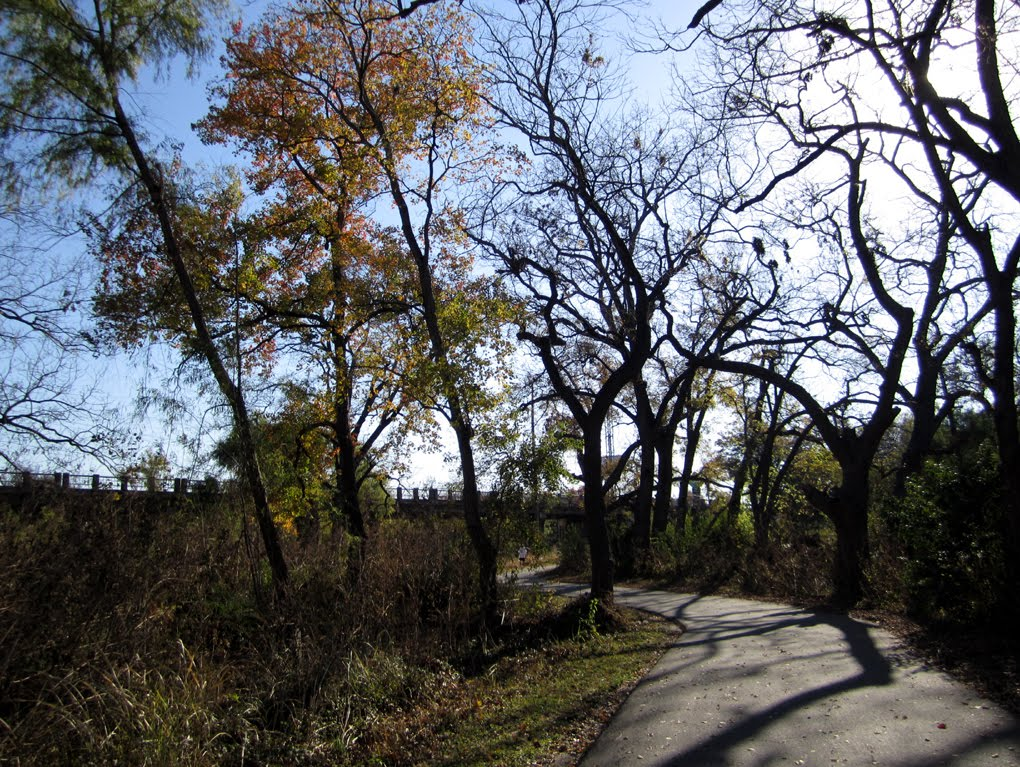 Salado Creek Greeway, San Antonio, TX, Кирби