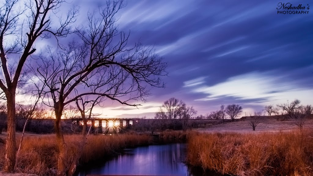 West Texas Waterscapes, Лаббок