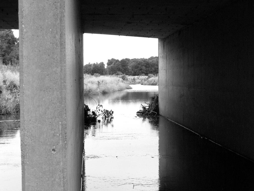 Under the Bridge, Лонгвью