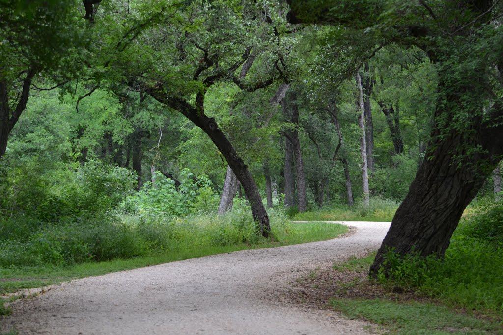 Brackenridge Park Path, Олмос-Парк